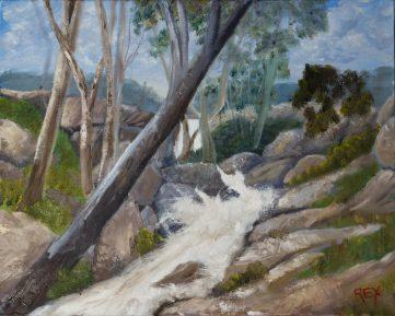 Reedy Creek at Eldorado