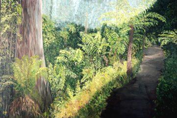 Lyrebird Walk, Sherbrooke Forest